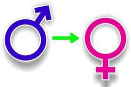 Смена пола не редкость