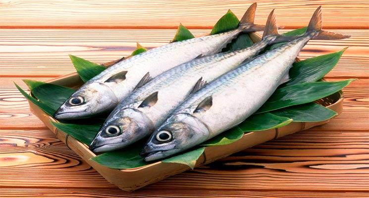 Источник белка - рыба