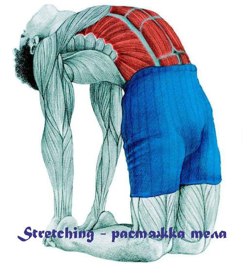 Stretching, растяжка тела
