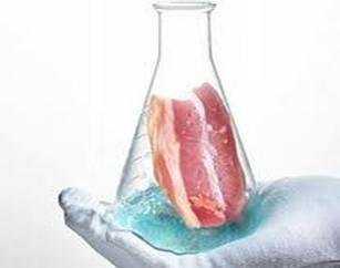Мясо из лаборатории
